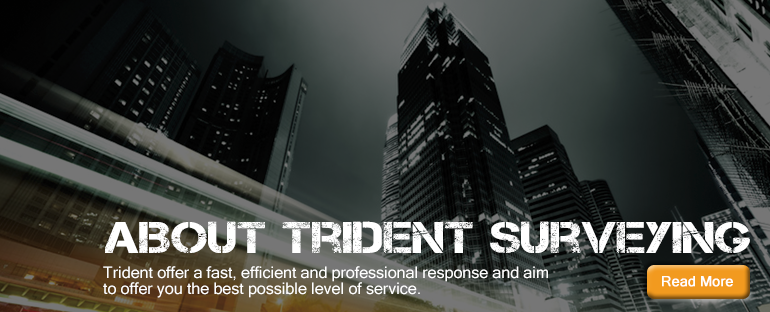 About Trident Surveying
