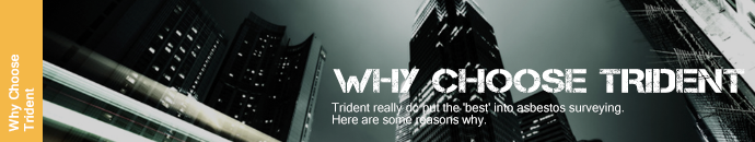 Why Choose Trident